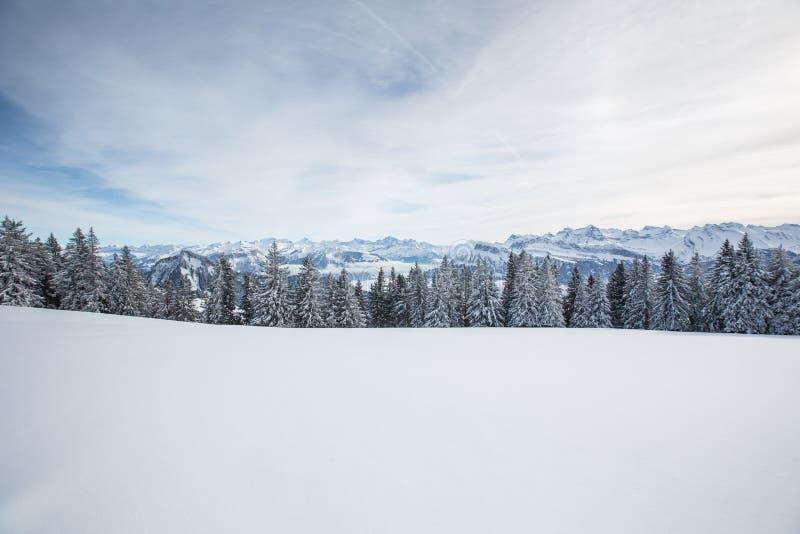 精采冬天高山风景 免版税库存照片