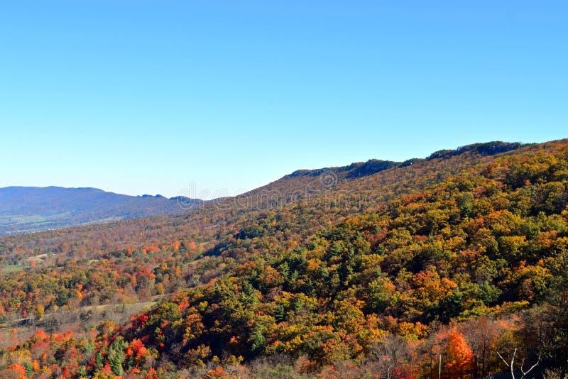 精采秋天颜色在西维吉尼亚 免版税库存图片