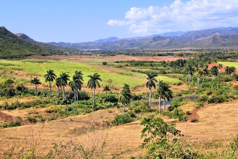 糖厂谷,古巴 图库摄影