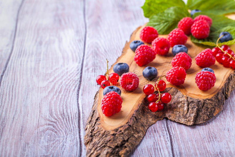 糖奶蛋烘饼锥体用水平森林的莓果 库存图片