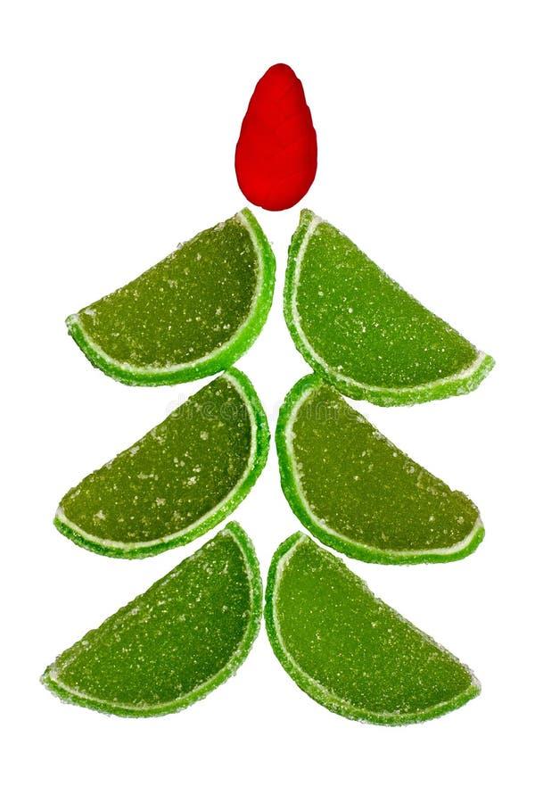 糖果圣诞节果子毛皮结构树 免版税库存照片