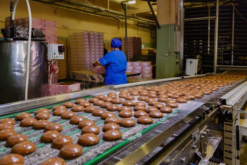 糖果店工厂 烘烤曲奇饼生产线  图库摄影