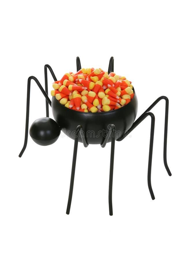 糖果蜘蛛 免版税库存照片