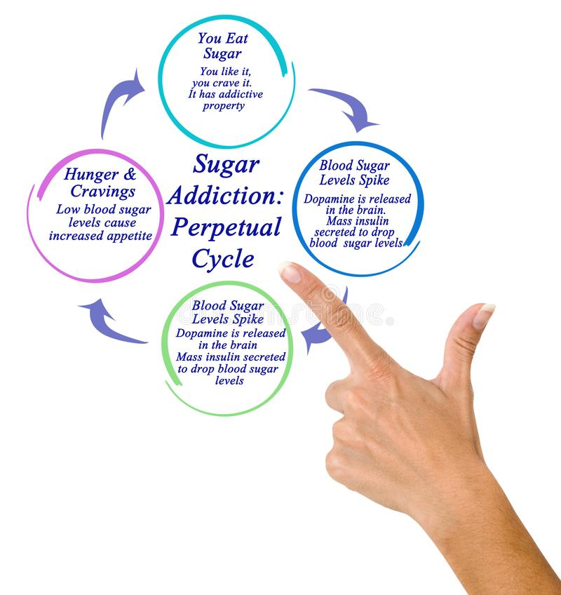 糖瘾:永久周期 免版税库存图片