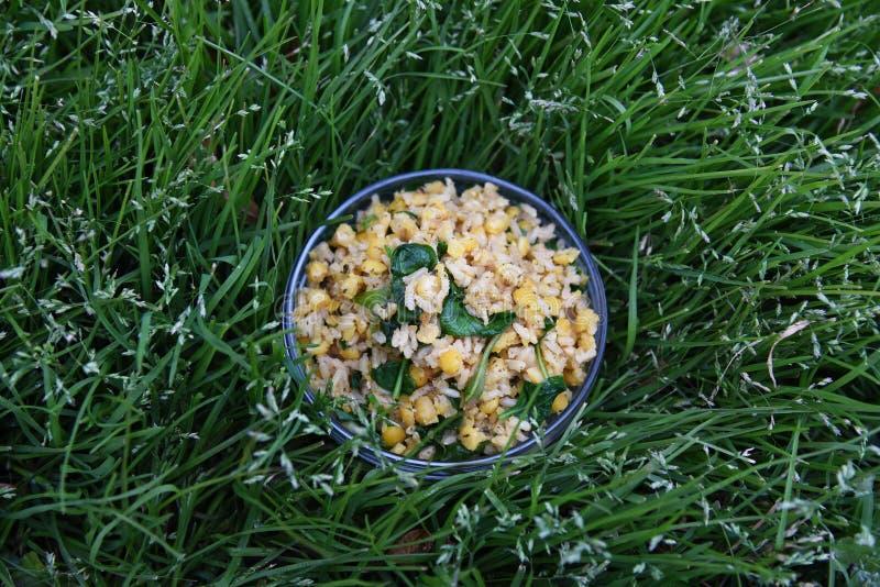 糙米和素食者是健康的 库存图片