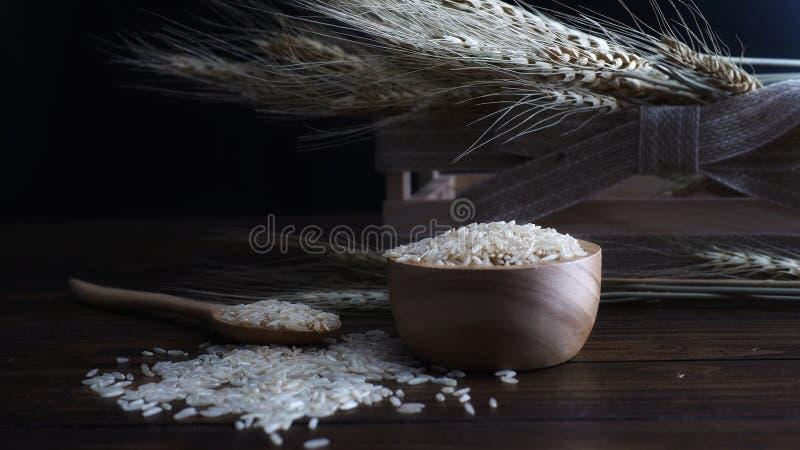 糙米和麦子植物木背景的 免版税库存图片