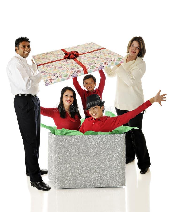 系列圣诞节惊奇 库存图片