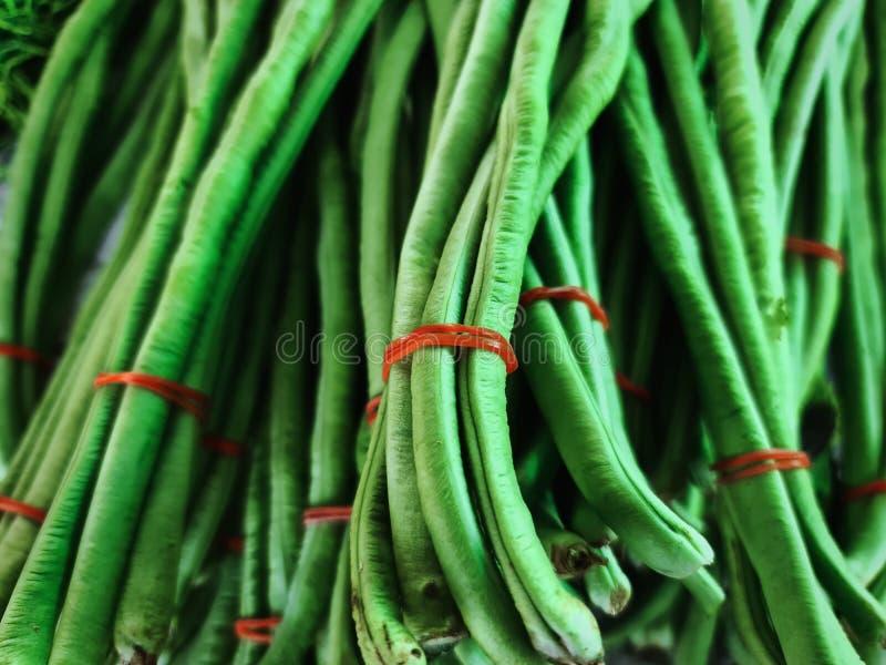 系带鲜绿长豌豆全框背景 免版税图库摄影