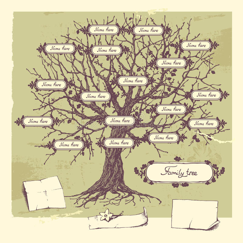 系族树 库存例证