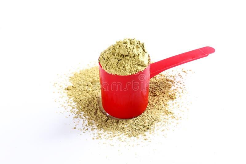 素食主义者体育食物补充 健康惨暴自由生活方式的大麻蛋白质 免版税库存照片