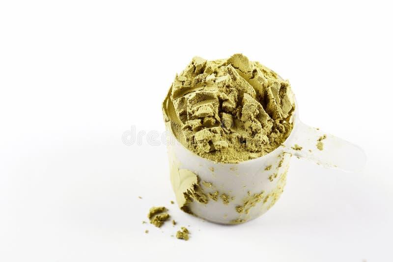 素食主义者体育食物补充 健康惨暴自由生活方式的大麻蛋白质 免版税图库摄影