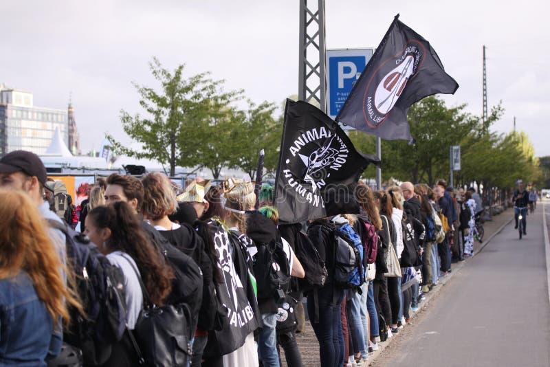 素食主义者和素食主义者动物解放的抗议在示范反对惨暴往动物和吃肉和牛奶店p 免版税库存照片