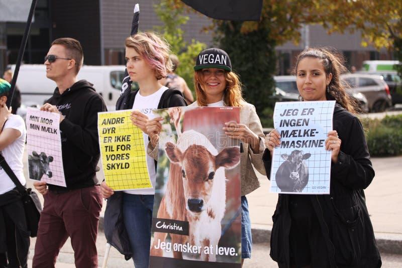 素食主义者和素食主义者动物解放的抗议在示范反对惨暴往动物和吃肉和牛奶店p 免版税库存图片