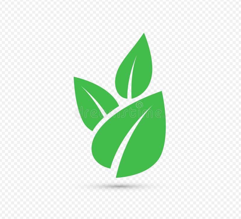 素食主义者的绿色叶子传染媒介象,生物eco设计传染媒介 向量例证