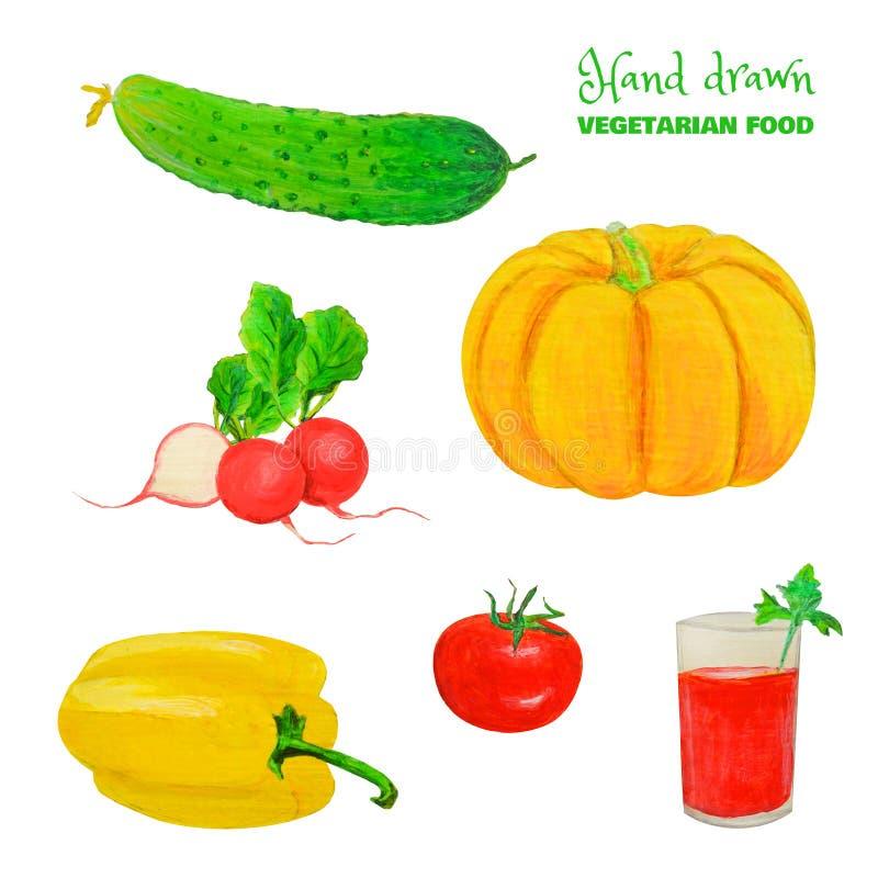 素食者五颜六色的集合 在白色隔绝的水多的新鲜蔬菜 手拉的黄瓜,蕃茄,萝卜,南瓜,西红柿汁 皇族释放例证
