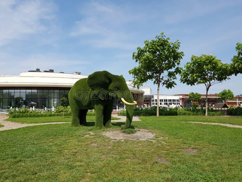 索契,俄罗斯- 5月31 2018年 庭院雕塑非洲大象在索契百乐酒店 免版税库存照片