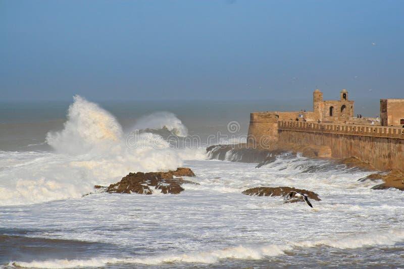 索维拉垒空中全景在索维拉,有大波浪的摩洛哥 索维拉是西部的一个城市 免版税图库摄影