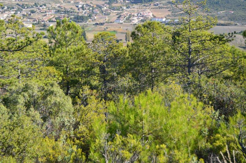索里塔Albalate美丽的景色从Altomira的登上范围的 风景旅行假日 免版税库存照片