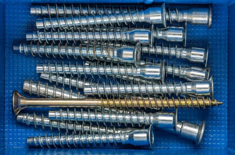 紧固件螺栓和坚果在组织者 库存图片