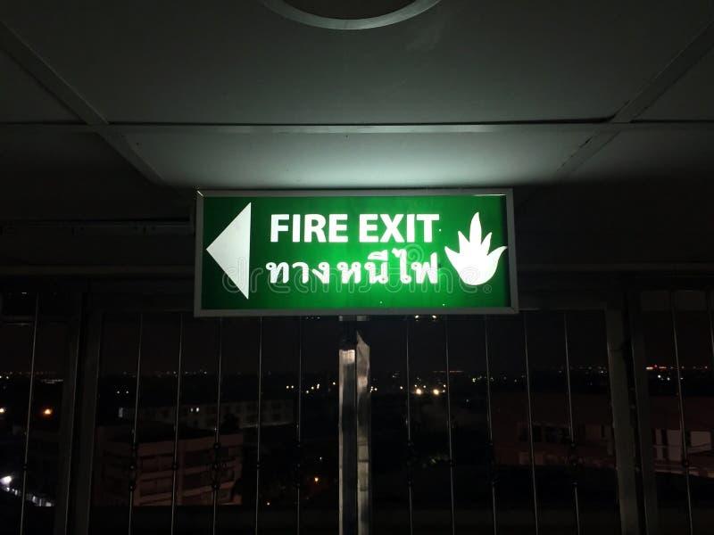 紧急绿色太平门标志,在天花板在晚上 库存照片