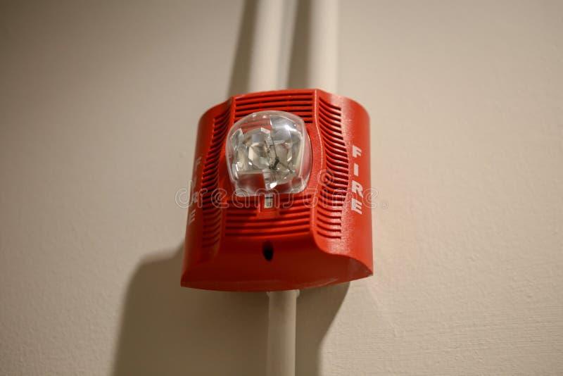 紧急警报器电灯泡 库存照片