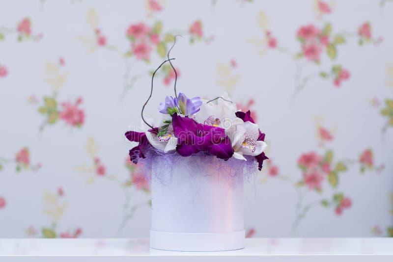 紫外兰花安排 免版税图库摄影