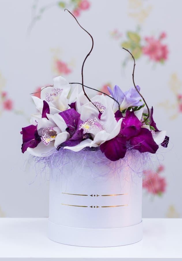 紫外兰花安排 库存图片