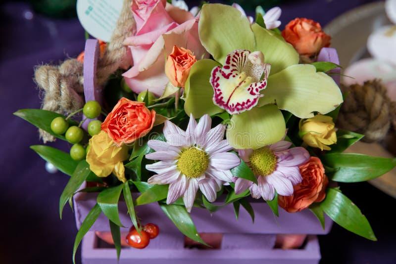 紫罗兰色分支兰花开花,兰科,叫作蝴蝶兰的兰花植物 在分支的美丽的紫罗兰色花 美好的d 库存照片