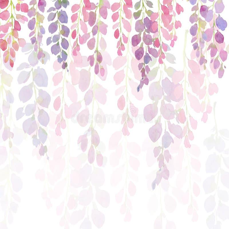 紫罗兰色和桃红色紫藤花,水彩在白色背景的手绘画 皇族释放例证