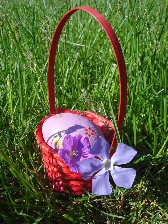 紫罗兰色复活节彩蛋和紫罗兰色春天在红色柳条筐开花 库存照片