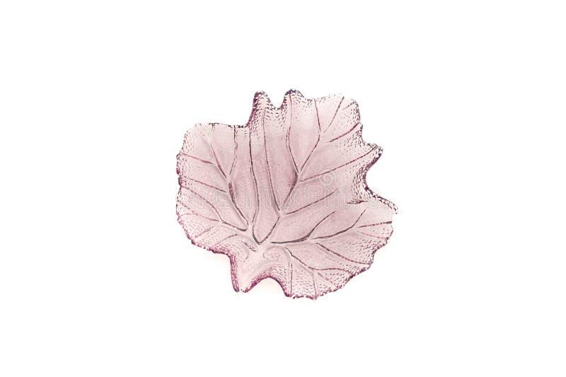 紫罗兰色板材作为叶子 免版税图库摄影
