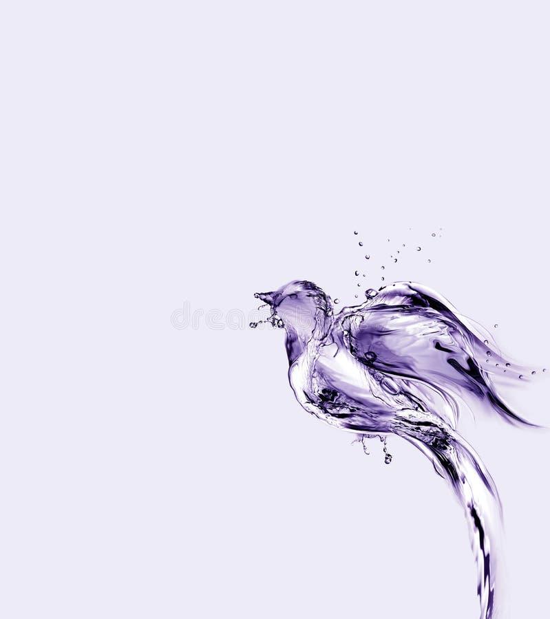 紫罗兰色水的去鸟飞行 库存图片