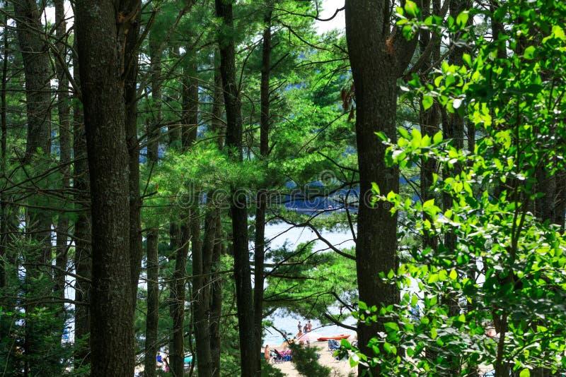 """紫胶西蒙,魁北克,加拿大†""""2018年7月29日:去海滩  图库摄影"""