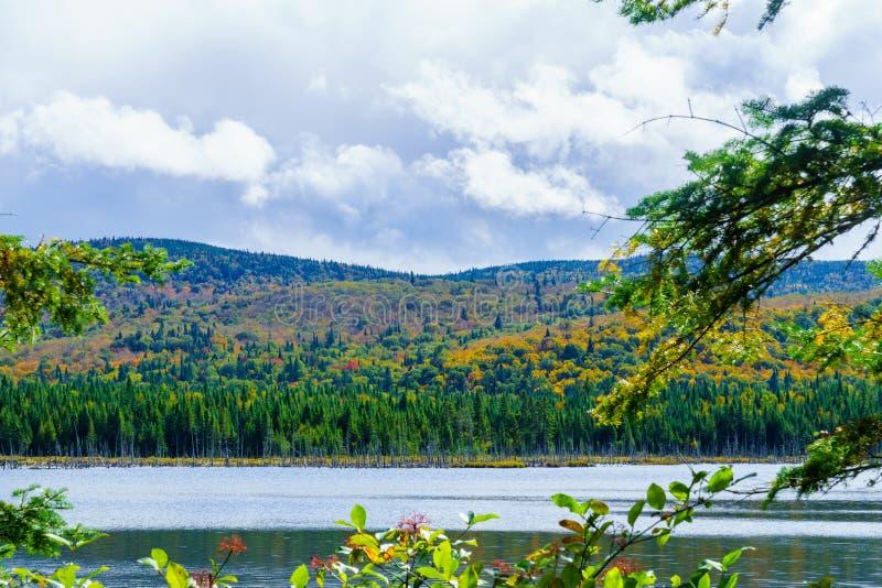 紫胶des Dix米莱斯湖,在Mont Tremblant国立公园 免版税库存照片