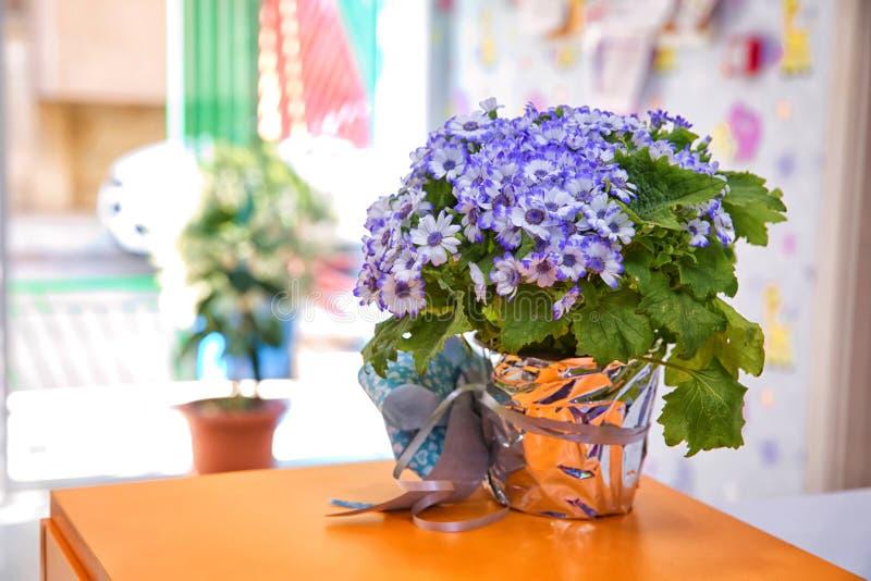 紫色丝带花 蓝色花美丽的花束在一个小花瓶的 Purpleviolet和白花在选择聚焦bac 免版税图库摄影