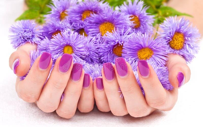 紫色修指甲和花 免版税库存图片