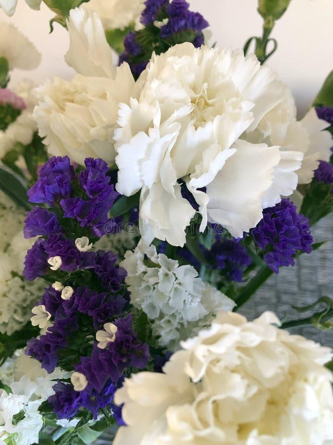 紫色和白花 库存图片