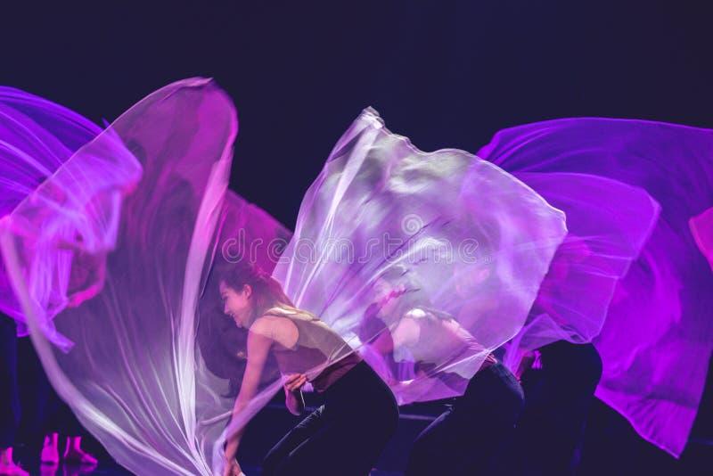 紫色围巾8--舞蹈戏曲驴得到水 免版税库存图片