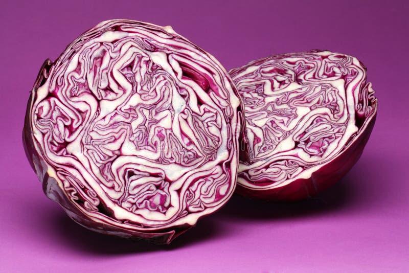 紫色圆白菜。 免版税库存图片