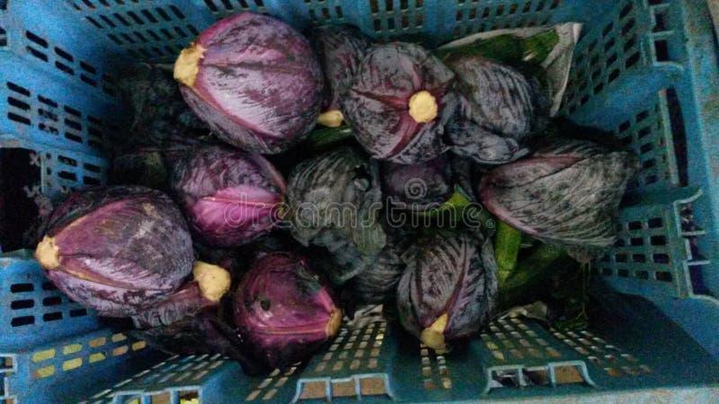 紫色圆白菜篮子  免版税库存照片