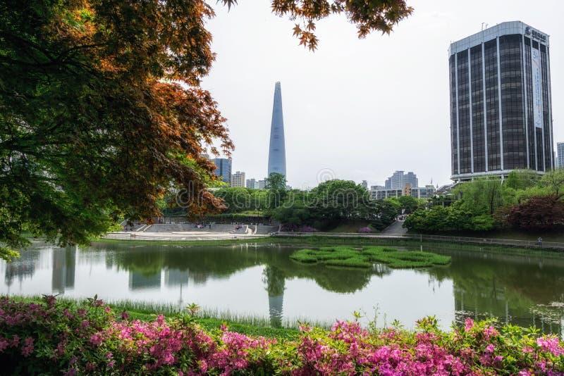 紫色杜娟花和汉城奥林匹克公园 免版税图库摄影