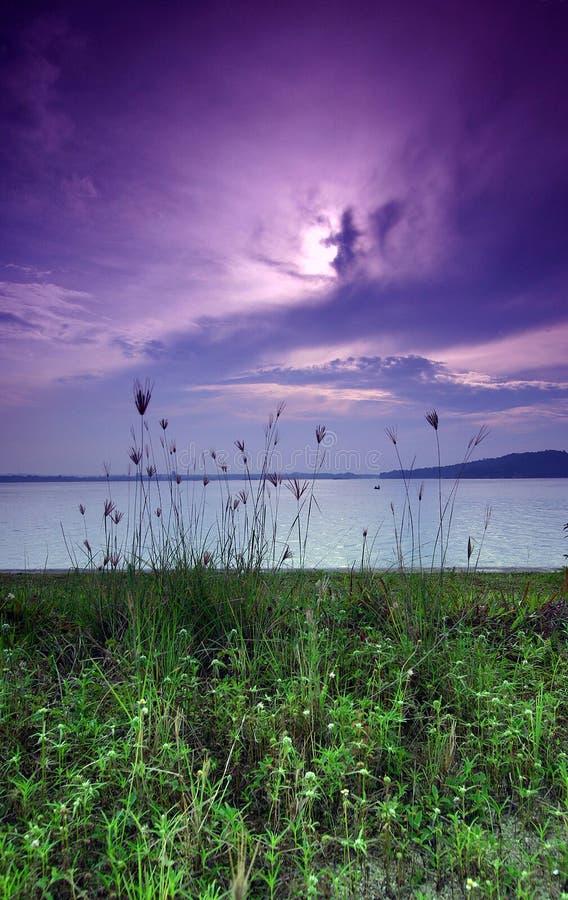 紫色海边日出 免版税库存图片