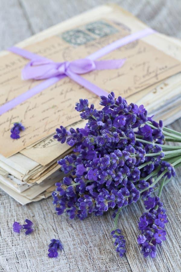 紫色淡紫色开花和老信件 库存图片