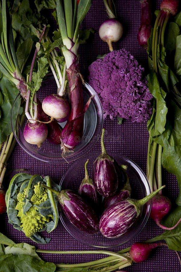 紫色素食者 免版税库存照片