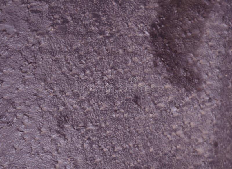 紫色纸纹理剪贴薄抓痕被弄脏的海绵, 免版税库存图片