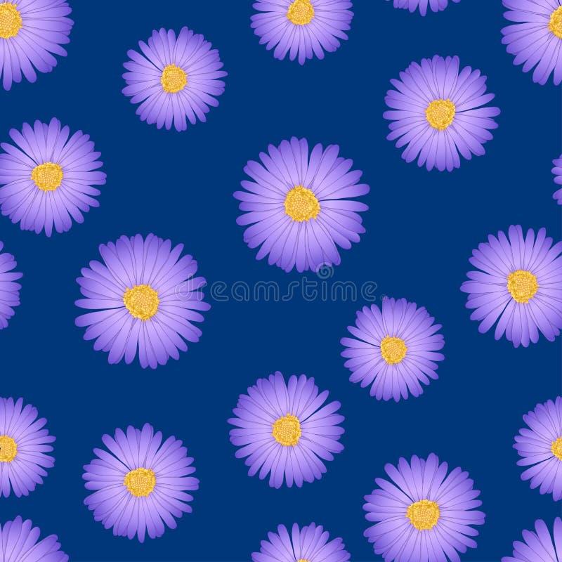 紫色翠菊,雏菊无缝在靛蓝色背景 也corel凹道例证向量 向量例证