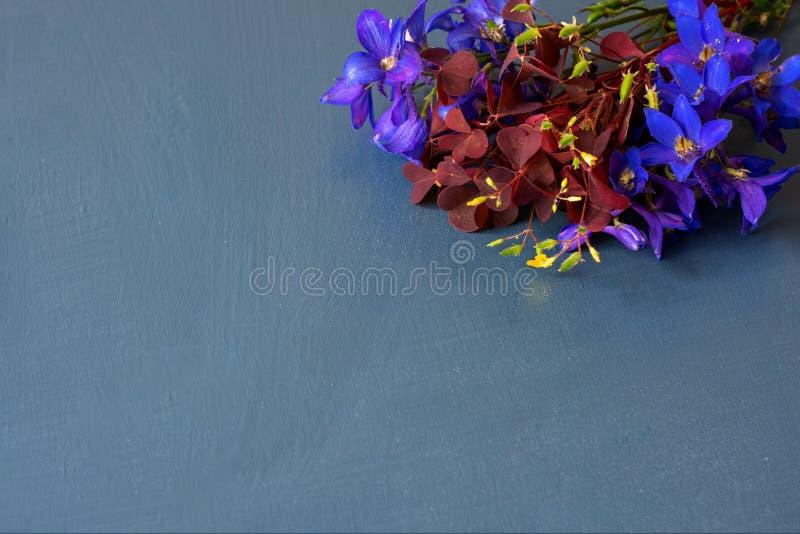 紫色花排列平板的明信片风格,以绿松石木为背景。紫色花排列平板的明信片风格,以绿松石木为è 免版税库存照片