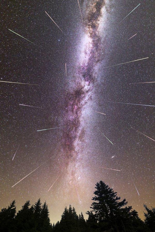 紫色银河流星松树剪影 库存图片