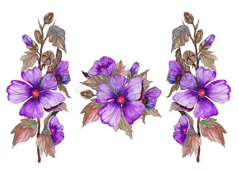 紫色锦葵属在与叶子和芽的一个词根开花 万圣节例证可怕集主题 在白色背景隔绝的新鲜的冬葵 库存例证