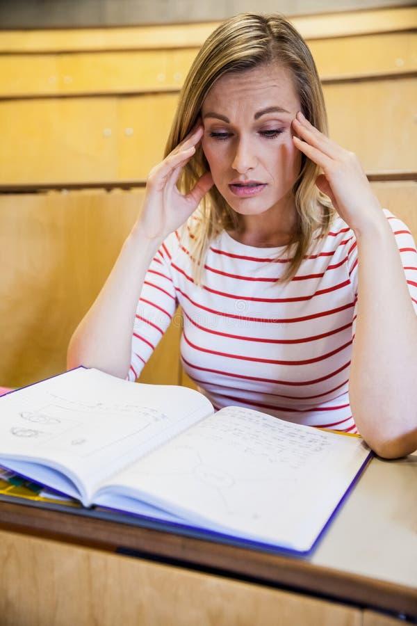 繁忙女学生学习 库存照片